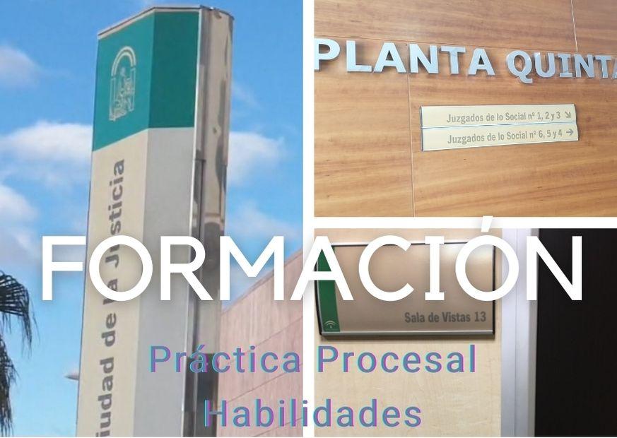 formación páactica procesal habilidades